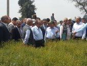 صور.. وزير الزراعة يتفقد محصول القمح بمحطة بحوث سخا فى كفر الشيخ