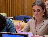 سحر نصر : رؤية الرئيس السيسى للتنمية المستدامة حققت تقدما اقتصاديا كبيرا