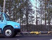 صور.. 10 روبوتات على شكل كلاب تعمل معًا لسحب شاحنة نقل كبيرة