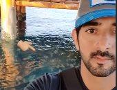 رحلة صيد ناجحة لولى عهد دبي وسط الدلافين