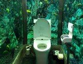 مقهى يابانى ينفق 200 ألف استرلينى لإنشاء حمام محاط بالاسماك..اعرف حكايته