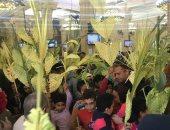 """قارئ يشارك صحافة المواطن احتفال دير القديسة دميانة بالدقهلية بـ""""أحد الشعانين"""""""