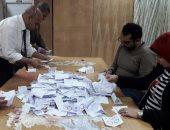 صور.. بدء الفرز باللجان الفرعية فى الفيوم بعد انتهاء التصويت بالاستفتاء