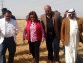 صور.. نائب وزير الزراعة تشهد فعاليات موسم حصاد القمح بطور سيناء