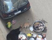 قارئة تشكو انتشار الباعة الجائلين بشارع رئيسى على كورنيش حدائق حلوان