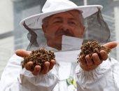 تسمم أكثر من 1.2 مليون نحلة فى صربيا بسبب الإفراط فى استخدام المبيدات