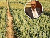 """""""الزراعة"""" تنظم دورة تدريبية لمكافحة آفات الحبوب والمواد المخزونة"""
