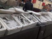 صور.. ارتفاع أسعار الأسماك بالإسماعيلية قبل ساعات من احتفالات شم النسيم