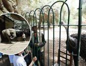 تطوير حدائق الحيوان ومراكز الإكثار للحصول على ولادات جديدة وتحسين الخدمات