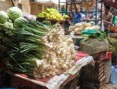 الزراعة: تسهيلات لمنح رخص صوب الخضر وحزمة إجراءات لزيادة الإنتاج
