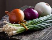 فوائد تناول البصل الأخضر بجانب الفسيخ والرنجة