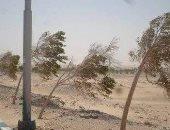 صور.. موجة طقس سئ ورياح محملة بالأتربة تجتاح الوادى الجديد