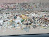 قارئ يشكو من انتشار القمامة والأوبئة بشارع جسر السويس