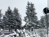 شاهد.. الثلوج تغطى مدينة إفران المغربية بكميات كبيرة