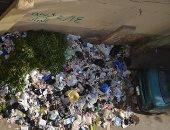شكوى من انتشار القمامة بشارع جمال عبد الناصر بالبراجيل