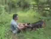 كلب تابع للشرطة الأمريكية يلقى القبض على سارق هارب (فيديو)