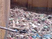 صور.. تراكم القمامة أمام مدرسة بقرية الروضة بالمنيا