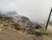 صور .. إصابة 17 شخص بالاختناق إثر اندلاع حريق بمخلفات زراعية بكفر الدوار