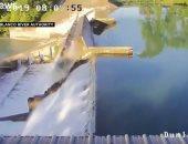 شاهد.. لحظة انهيار سد على نهر جوادلوب في تكساس بأمريكا