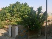 شكوى من انتشار  عشوائيات بمساكن اسبيكو بمدينة السلام