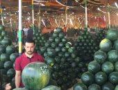 مزاد بيع البطيخ فى أكبر شادر بالمحلة.. والأسعار من 10 لـ35 جنيها