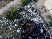 قارئة تشكو تراكم القمامة بعمارات العجيزى بطنطا وانتشار الحشرات والأمراض
