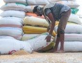 الأردن يشترى 60 ألف طن من القمح الصلد فى مناقصة