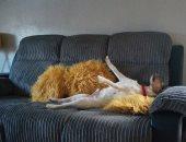 ملك الأريكة.. شاهد الحيوان الأليف الفائز بمسابقة الأكثر كسلًا