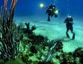 دراسة: زيادة حموضة المحيطات تهدد أنظمة الشعاب المرجانية