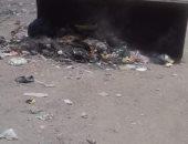 صور.. رفع المخلفات من شوارع قرية برديس بسوهاج
