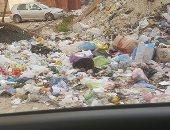 قارئ يشكو من انتشار القمامة والأوبئة بمنطقه أرض الجمعيات بالإسماعيلية