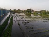 صور.. مياه نهر النيل تغمر محطة صرف صحى بالقناطر