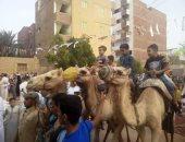 صور..  أطفال الوادى الجديد يحتفلون بعيد الفطر بركوب الجمال والخيل