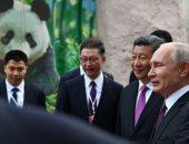 دبلوماسية الباندا الصينية تعمق العلاقات والثقة بين موسكو وبكين