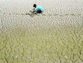 الهند تعانى من درجات حرارة شديدة وضربة الشمس تقتل القرود