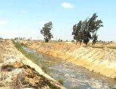 تطهير المصارف الزراعية غرب الدلتا لمنع حدوث أزمات خلال الصيف.. صور