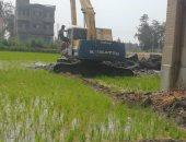 صور.. إزالة 3 أفدنة تعديات بزراعة شتلات أرز داخل منافع محطة مصرف بكفر الشيخ