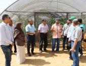 """صور..""""تعليم الوادى الجديد"""": لجنة لتقييم حاصلات الصوب بمدرسة الخارجة الزراعية"""