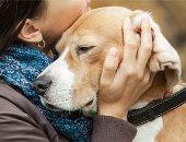 """لو بتحب الكلاب.. 5 نصائح تساعدك فى تربية """"الجرو"""""""