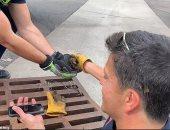 رجل إطفاء يستخدم صوت بطة على هاتفه لإنقاذ صغارها.. شوف إزاى