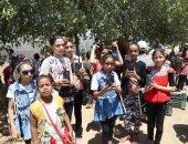 صور تعليم الوادى الجديد ينفذ مشروع زراعة أشجار المورينجا بالصوب الحكومية