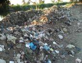 قارئة تشكو انتشار القمامة بشارع الدكتور أحمد فهمى بأسوان