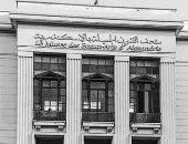 متحف الفنون الجميلة بالإسكندرية يستقبل زواره ليلا.. احتفالاً بكأس الأمم
