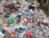 شكوى من انتشار القمامة بشارع الكوتاهية الإبراهيمية بالإسكندرية