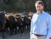 للحد من الغازات الدفيئة.. دراسة توضح إمكانية خفض الميثان الناتج عن الأبقار
