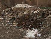 شكوى من تراكم القمامة بطريق المنية شارع مستشفى المصطفى فى المرج الجديدة