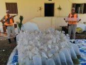المسطحات المائية بالبرلس تضبط 13 ألف وحدة زريعة أسماك قبل إلقائها بالبحيرة