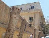صور..كارثة بيئية.. مستشفى عام تقطع الأشجار .. والحى يحرر مخالفة بالإسكندرية