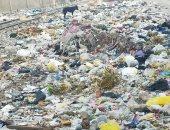 صور .. اضبط مخالفة .. تراكم القمامة فى مداخل قرية القلج بالقليوبية