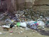 حملة مكبرة لرفع تراكمات القمامة من منطقة صندفا بالمحلة الكبرى